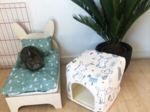 green bedding for rabbit bed