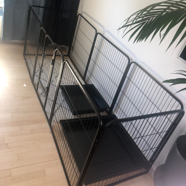 black rabbit enclosure with pee trays