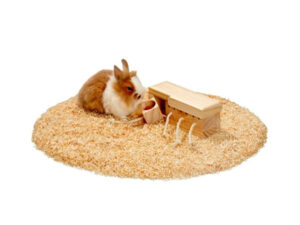 Rabbit playing with wooden toys