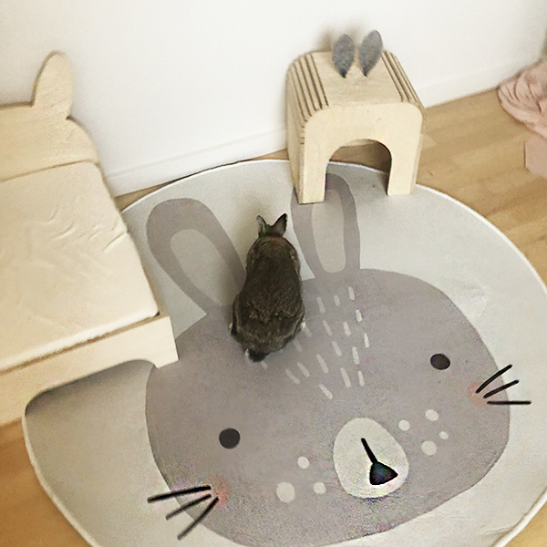 round carpet with rabbit and rabbit house