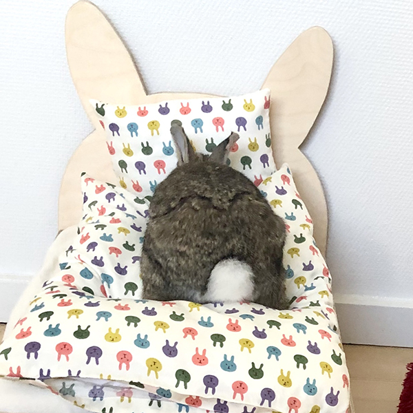 bedding and rabbit bed and nini
