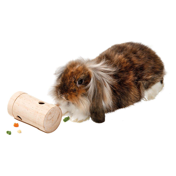 wooden activation roller with rabbit