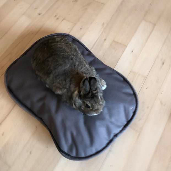 brown oval pillow with rabbit on