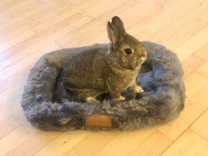 nini rabbit fur basket