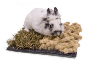 Bunny Snuffle mat with rabbit on
