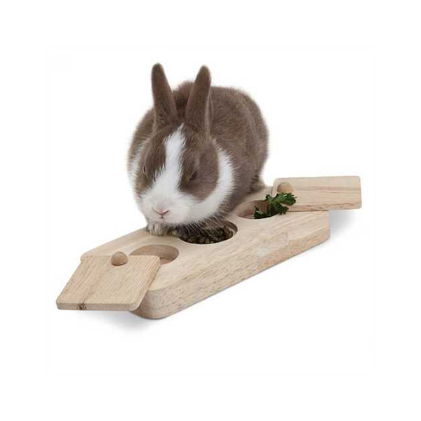 Rabbit playing with activity toys wood