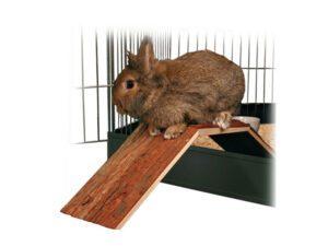 rabbit cage wooden bridge with rabbit on