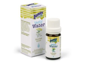 bunny nature fennel water