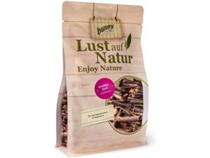 bunny nature small gnawing sticks