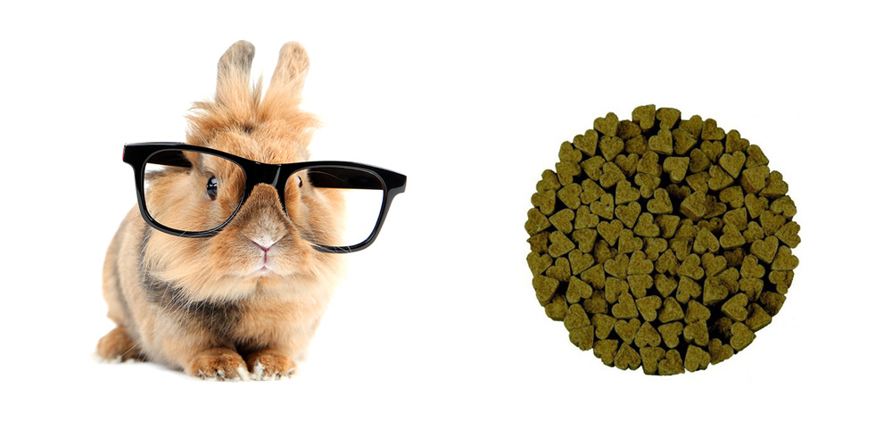 how to choose the best pellets for rabbit
