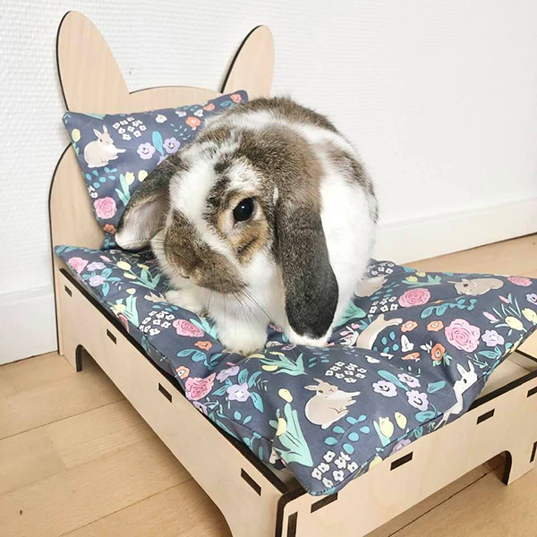 rabbit in bed blue