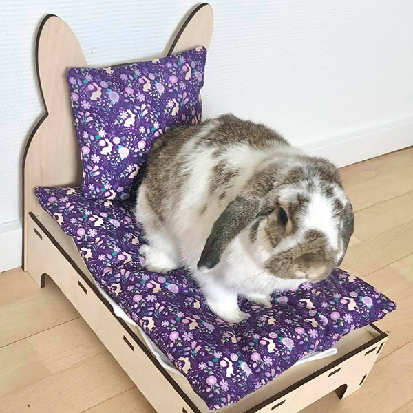 rabbit in bed with purple flowers