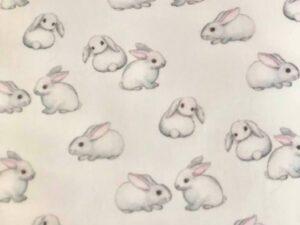 close to white rabbits